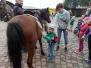 Stadnina koni Pegaz